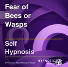 Fear of Bees or Wasps MP3