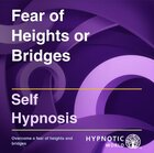 Fear of Heights or Bridges  MP3