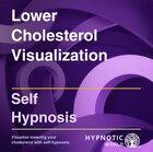 Lower Cholesterol Visualization MP3