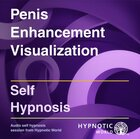 Penis Enhancement Visualization MP3