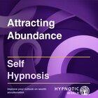 Attracting Abundance MP3