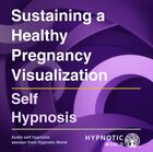 Sustaining a Healthy Pregnancy Visualization MP3