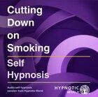 Cutting Down on Smoking MP3