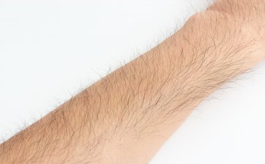 Bodily hair